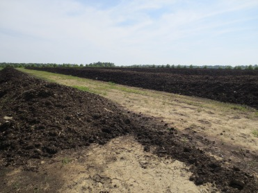 Compost in the making.